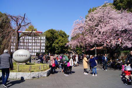 Токио, парк Уэно