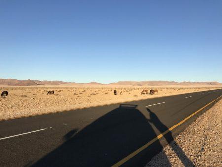 Автостоп в Африке