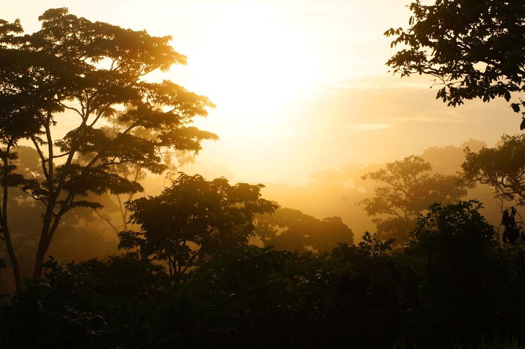 Рассвет в Танзании