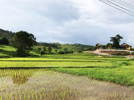 Автостоп в Лаосе