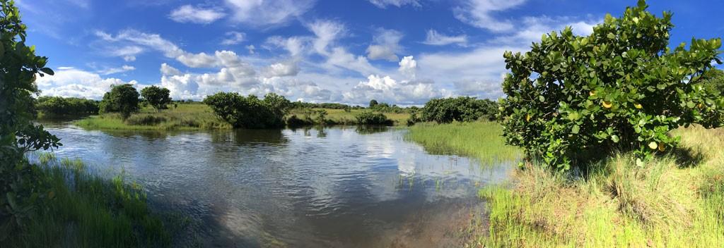 Река в Касаме, Замбия