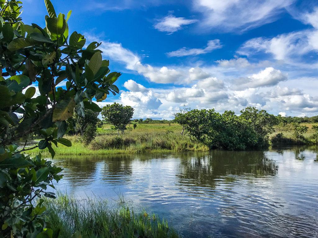 Река, Замбия