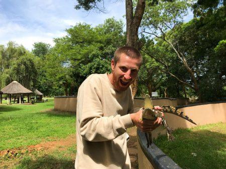 Подержать крокодила