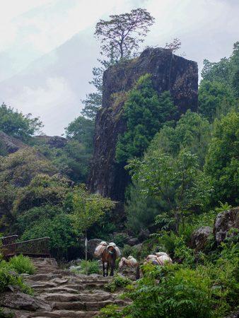 Гималаи, Непал, Лукла позади