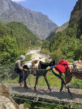 Жители Гималаев