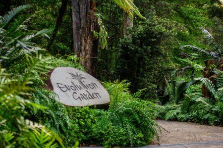 Evolution garden, Singapore. 24.08.2018