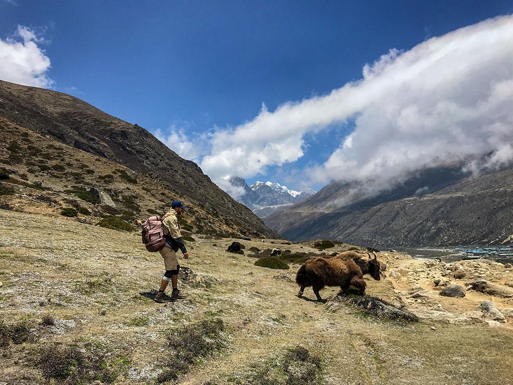 Трекинг в Гималаях День 6: Ама Даблам - Лобуче